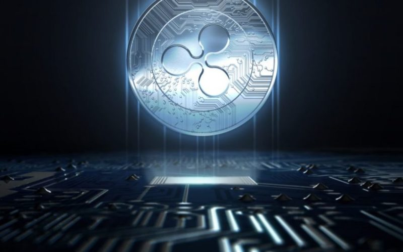 ripple8 800x500 - Ripple Receives Support from a $100 Million Hedge Fund