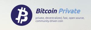 Captura de pantalla 2018 03 07 a las 15.24.34 300x101 - Bitcoin Private Will Be Added to Ledger Nano in the Upcoming Version