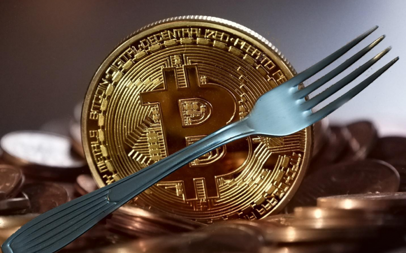 Imagen 1 3 800x500 - The History and Evolution of Cryptocurrency Forks