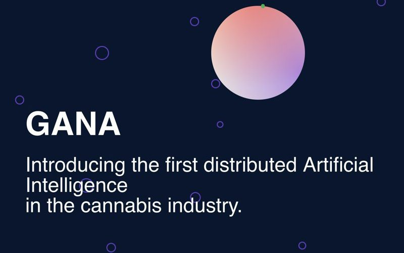photo6048841694566264105 800x500 - GANA Technologies Completes a Successful Private Token Sale, Prepares to Start Public Sale on May 21