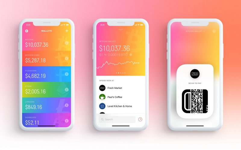 Flexa 800x500 - Cryptocurrency Application Wants to Help Merchants All Over the World