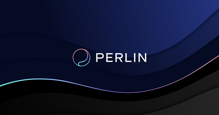 Hidden Gems of Cryptocurrency #5 - Perlin (PERL) | UseTheBitcoin