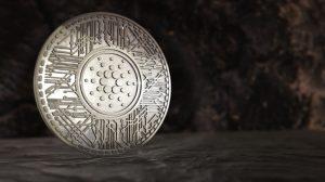 Cardano silver coin