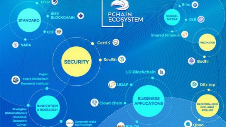 pchain ecosystem