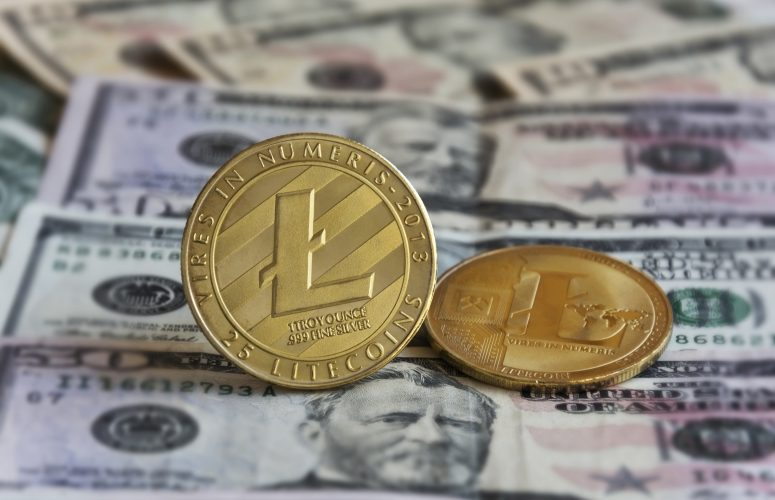 litecoin banknotes bg 775x500 - Two-Thirds Of Crypto Investors Would Choose Crypto Salary