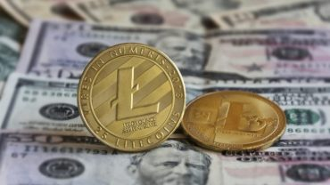 Two gold coins LITECOIN on banknotes, close-up, background blur