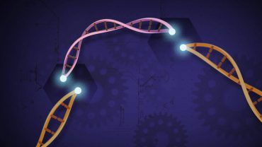 genomes.io cryptocurrency