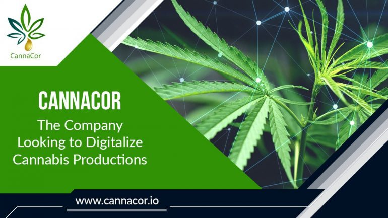 cannacor digitalize cannabis productions