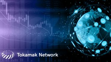 Tokamak Network Logo