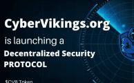 Cyber Vikings